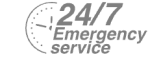 24/7 Emergency Service Pest Control in Longfield, Hartley, New Ash Green, DA3. Call Now! 020 8166 9746